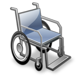 wheelchair 256